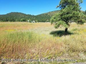 5675 E Girls Ranch Road, Flagstaff, AZ 86004