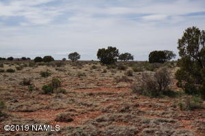 1764 Avondale Road, Williams, AZ 86046