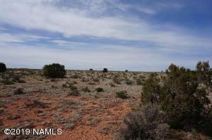 1803 S Hittle Drive, Valle, AZ 86046