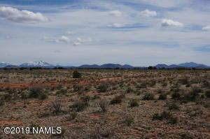 1763 S Hittle Drive, Valle, AZ 86046