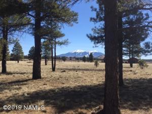 3334 Prairie View Drive, Parks, AZ 86018