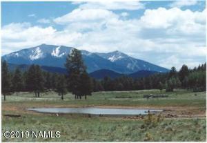 17622 Crowley Trail, Flagstaff, AZ 86001