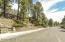 3440 N Monte Vista Drive, Flagstaff, AZ 86004