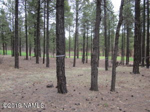4780 S Flagstaff Ranch Rd Road, 110, Flagstaff, AZ 86005