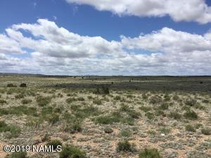 7351 Mineral Wells Road, Williams, AZ 86046
