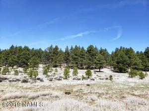 664 N Cool Pines Road, Williams, AZ 86046