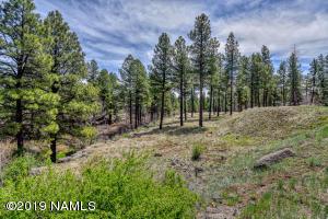 2271 W Blue Willow Road, Flagstaff, AZ 86001