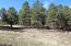 3322 Old Munds Hwy, Flagstaff, AZ 86005