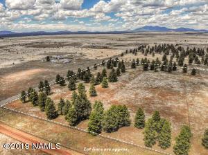 12122 Camp Kimball Road, Parks, AZ 86018