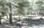 65 W Campfire Trail, Munds Park, AZ 86017