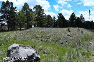 301 S Babbitt Drive, Flagstaff, AZ 86001