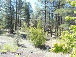 655 E Hillside Drive, Munds Park, AZ 86017