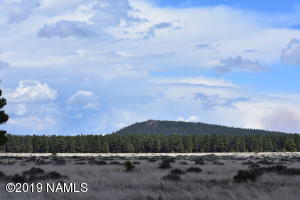 12298 Camp Kimball Road, Parks, AZ 86018