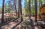 17160 Redwood Drive, Munds Park, AZ 86017