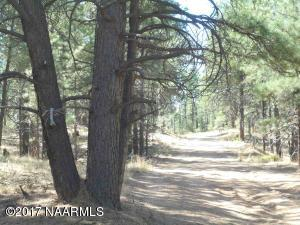 10.12 heavily treed acres - perfect for your dream home!