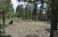 1999 E Iron Horse Court, Flagstaff, AZ 86005