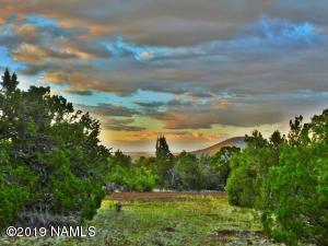 290 W Eagle Nest Road, Williams, AZ 86046