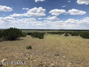 12967 Howard Mesa Loop, Williams, AZ 86046