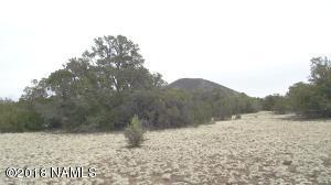 10741 N Dry Gulch Trail, Williams, AZ 86046