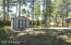 Storage Shed, mature pines & apple trees in the backyard