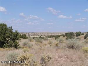 9979 W Bright Sky Trail Trail, Williams, AZ 86046