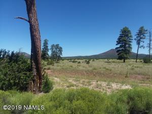 2347 E Spring Valley Road, Williams, AZ 86046