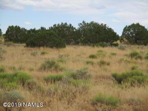 7337 S Latigo Road, Williams, AZ 86046