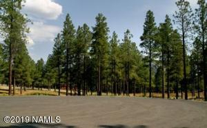 4900 E Gandalf Lane, Flagstaff, AZ 86004