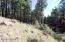 5216 Hidden Hollow Road, Flagstaff, AZ 86001