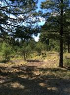 1872 E Sleeper Hollow Court (Lot 134), Flagstaff, AZ 86005