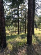 1884 E Sleeper Hollow Court (Lot 135), Flagstaff, AZ 86005