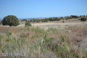 00 Longbranch Trail, Prescott, AZ 86305