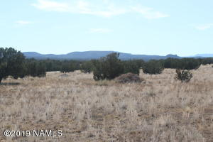 30217001g Tanner Road, Ash Fork, AZ 86320