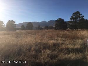 12282 Daniel Way, Flagstaff, AZ 86004