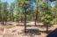 3779 S Brush Arbor, 30, Flagstaff, AZ 86005