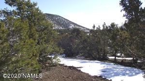 2356 E Clear Point Way, Williams, AZ 86046