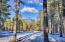 8400 N Roundtree Road, Flagstaff, AZ 86001
