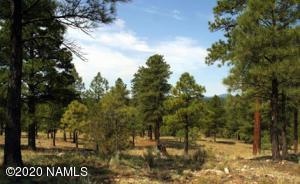 4810 E Gandalf Lane, Flagstaff, AZ 86004