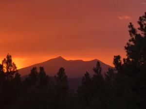 5155 E Cottonwood Drive, Flagstaff, AZ 86004