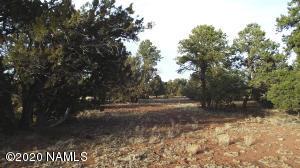 8192 E Water Tank Circle, Williams, AZ 86046