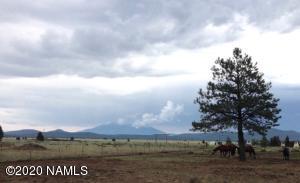 2797 S Peaks View Drive, Parks, AZ 86018