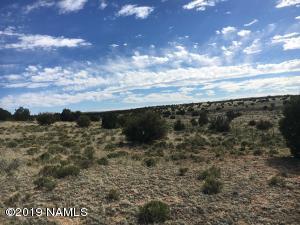 8559 Mineral Wells Road, Williams, AZ 86046