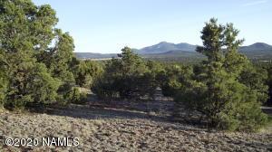 000 Grantham Ranch Road, Williams, AZ 86046