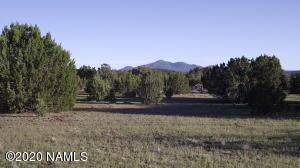 000 N Rocky Ridge Road, Williams, AZ 86046