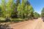 395 Lodge Drive, Munds Park, AZ 86017
