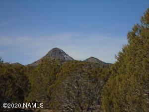 197 Westwood Ranch Lot #197, Seligman, AZ 86337
