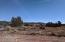 5350 E Lasso Loop Road, Williams, AZ 86046