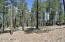 3410 S Las Colinas Court, Flagstaff, AZ 86005