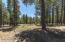 2662 Tom Pollock, Flagstaff, AZ 86005