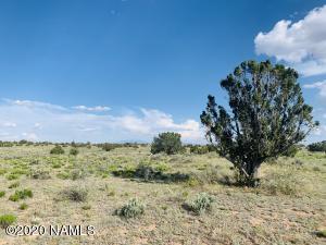 5150 N Woodland View Road, Williams, AZ 86046